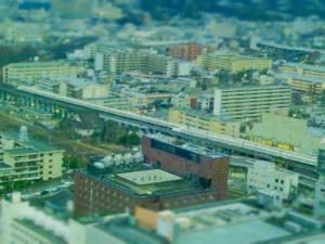 20120208_190000_1.jpg